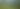 Deluxe Seaspray Grass Picnic 2